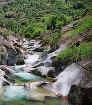 Reserva Natural de la Garganta de los Infiernos (Cáceres)