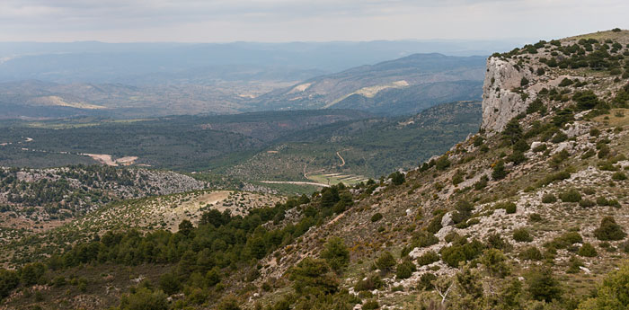Imagen de los campos de Albacete