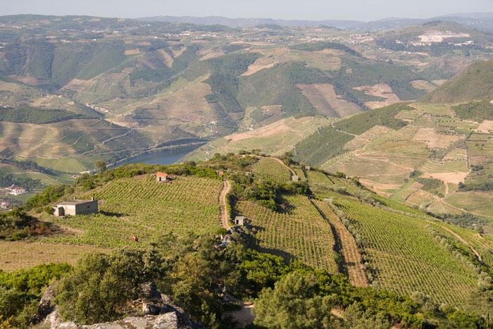 O vale do Douro perto da Régua