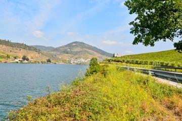 Carretera de Peso de Régua a Pinhao (Portugal) / iStock