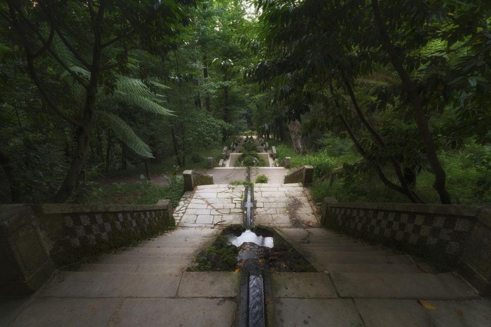 Interior del bosque de Buçaco, en Portugal
