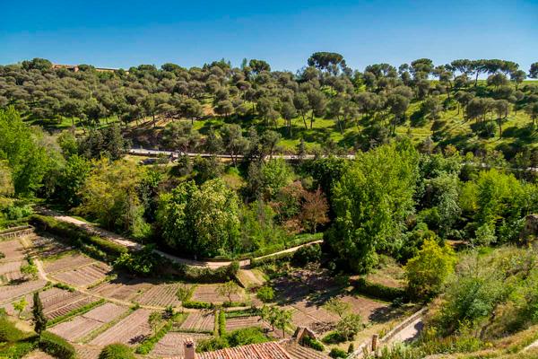 Cementerio judío, judería de Segovia ©foto red de juderías