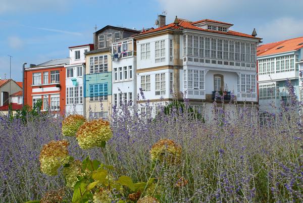 Casas típicas de Ferrol ©iStock
